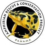 Panama Amphibian Rescue and Conservation Project Logo