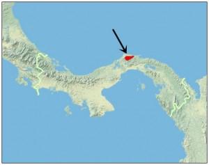 atelopus limosus range map