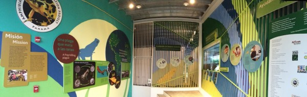Exhibition niche where visitors can glimpse inside a pod