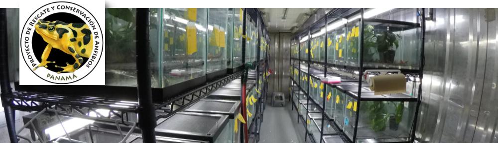 Proyecto de Rescate y Conservación de Anfibios