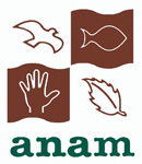 ANAM Logo