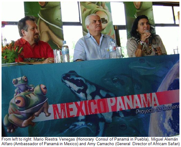 Launch of Panama Amphibian Rescue and Conservation Project in Mexico at Africam Safari