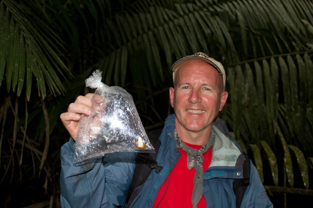 Defenders of Wildlife's Mark Cheater holds a Toad Mountain harlequin frog he collected on a recent expedition to the Darien. (Photo courtesy of Mark Cheater, Defenders of Wildlife)